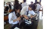 顕微鏡で観察の画像