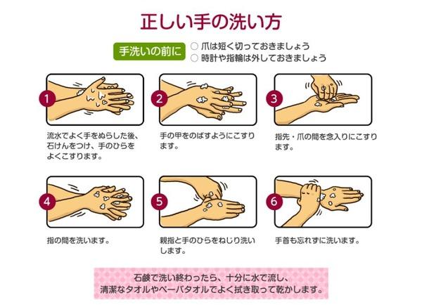 食事前に手を洗う人は約半数…正しいノロウィルス予防を解説 1枚目の ...
