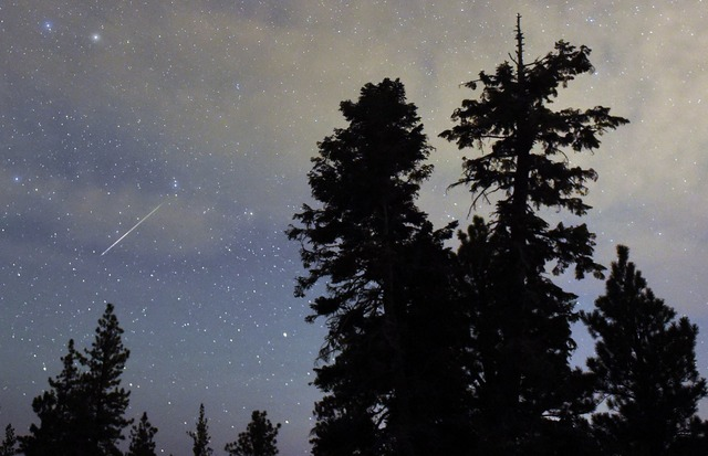 The Annual Perseid Meteor Shower(Photo by Ethan Miller/Getty Images) 画像はイメージ