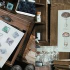 完成させて自分だけの図鑑に「鉱物と理科室のぬり絵」