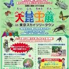 【夏休み】巨大ヘラクレスも登場、スカイツリー「大昆虫展」8/25まで 画像