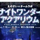 新江ノ島水族館×チームラボ、夜のスペシャルイベント12/25まで 画像