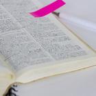 現役高校生5人に聞く、いまどき電子辞書の使い方 画像