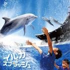 【夏休み2016】京都水族館でイルカとずぶぬれ水遊び7/23スタート 画像