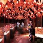 【夏休み2016】金魚づくしのすみだ水族館でお江戸の夏祭り気分を楽しもう 画像