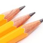 【中学受験の塾選び】サピックス小学部の特徴と費用(2015年度版) 画像