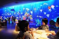 TOKYO DESIGN WEEKにチームラボ「お絵かき水族館」が登場