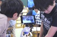 生徒全員が授業に積極参加…小学校でデジタル顕微鏡を活用した理科実験 画像