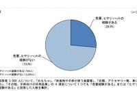 三輪車・ベビーカーでヒヤリ…東京都が乳幼児の製品事故防止ガイド作成 画像