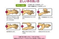 食事前に手を洗う人は約半数…正しいノロウィルス予防を解説 画像