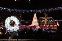 【冬休み】親子でイルミネーションの中を走る、国営昭和記念公園12/26 画像
