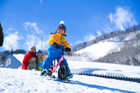 【冬休み】パウダースノーで雪遊び、長野・白馬の3スキー場に新設エリア登場