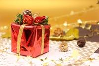 クリスマスプレゼント、男の子・女の子に何あげる? スポーツ・学び・遊びを紹介 画像