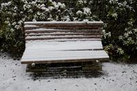 首都圏で積雪、学生の足を直撃…臨時休講で「詫び単位」や交通費要求 画像