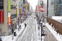 1/23-25また大荒れか…西日本中心に大雪、受験生は注意を 画像