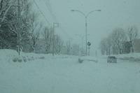 北海道で暴風雪、3/1夕方ピーク…公立高校30校が卒業式延期