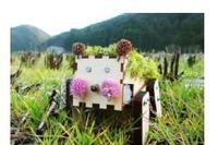 博報堂と高知県佐川町、小学校高学年向け「創造性教育プログラム」を共同開発