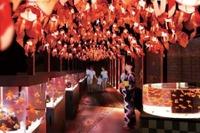 【夏休み2016】金魚づくしのすみだ水族館でお江戸の夏祭り気分を楽しもう