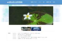 「金色に輝くハモ」が話題、和歌山県立自然博物館の子どもイベント情報
