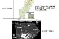 新種の地球外物質を「Hoshi」と命名、JAXAと筑波大学 画像