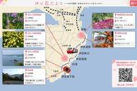 スマホでクーポン取得、NTTと伊豆急がO2Oで伊豆の観光客を支援 画像