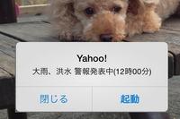 気象警報と避難情報のプッシュ通知機能を追加、Yahoo! JAPANアプリ 画像