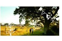 LUSH初の野外イベント、100%自然エネルギーでワークショップなど提供 画像