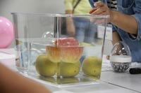 【ワークショップコレクション10】カボチャとミニトマトどっちが浮くのか、浮力探検隊 画像