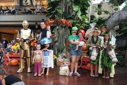0歳から参加できるハロウィーン仮装コンテスト…ハワイ 画像