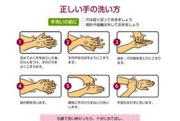 食事前に手を洗う人は約半数…正しいノロウィルス予防を解説