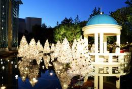 東京ディズニーリゾート「イクスピアリ」15周年、新イルミネーション登場 画像