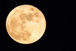 話題の「ピンクムーン」、その由来は? 4/22夜11時に「4月こと座流星群」と共演