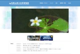 「金色に輝くハモ」が話題、和歌山県立自然博物館の子どもイベント情報 画像