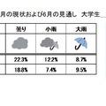 就職活動に対する心情の天気模様