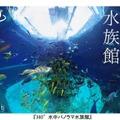 360度動画「水中パノラマ水族館」