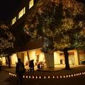 上智大学 (画像提供:上智大学)
