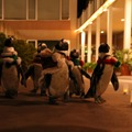 クリスマスペンギンパレード 夜のようす