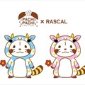 (c) NIPPON ANIMATION CO., LTD.  (c) PACHI PACHI FACTORY
