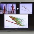 ジャンプのシミュレーションにモデリングデータを活用する。選手本人のデータでシミュレートできる