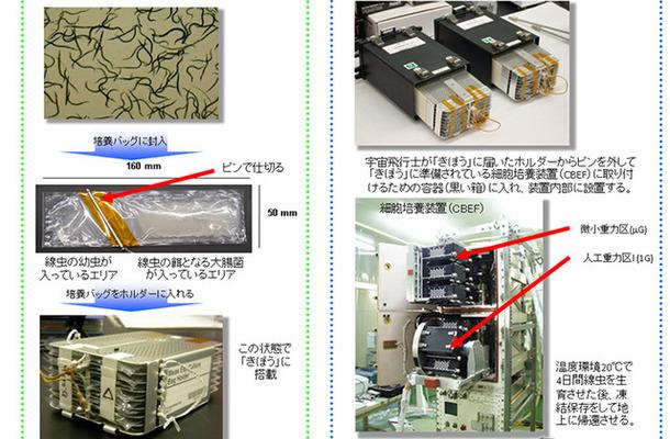 CERISE宇宙実験の概要