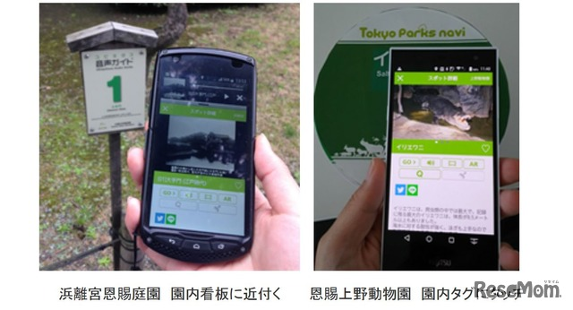 「Tokyo Parks Navi」使用イメージ