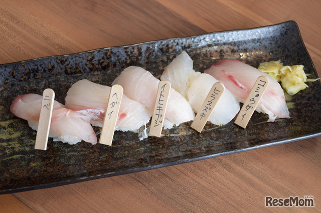 東京大学 柏キャンパス 一般公開2017/大気海洋研究所に隣接されているお寿司屋さん「お魚倶楽部 はま」のスペシャルランチ