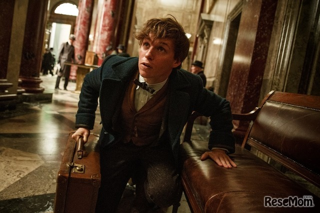 ファンタスティック・ビーストと魔法使いの旅 (c) 2016 Warner Bros. Ent. All Rights Reserved. Harry Potter and Fantastic Beasts Publishing Rights (c) JKR.