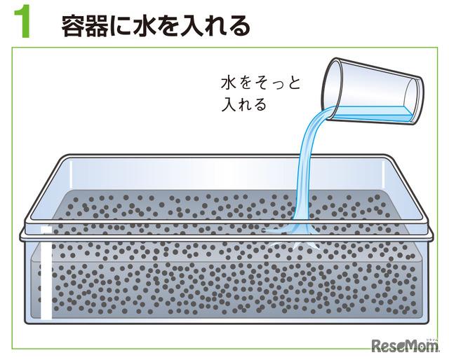 液状 化 現象 自由 研究