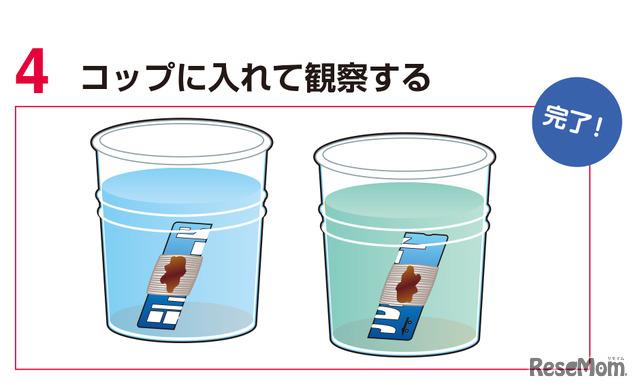実験2 手順4