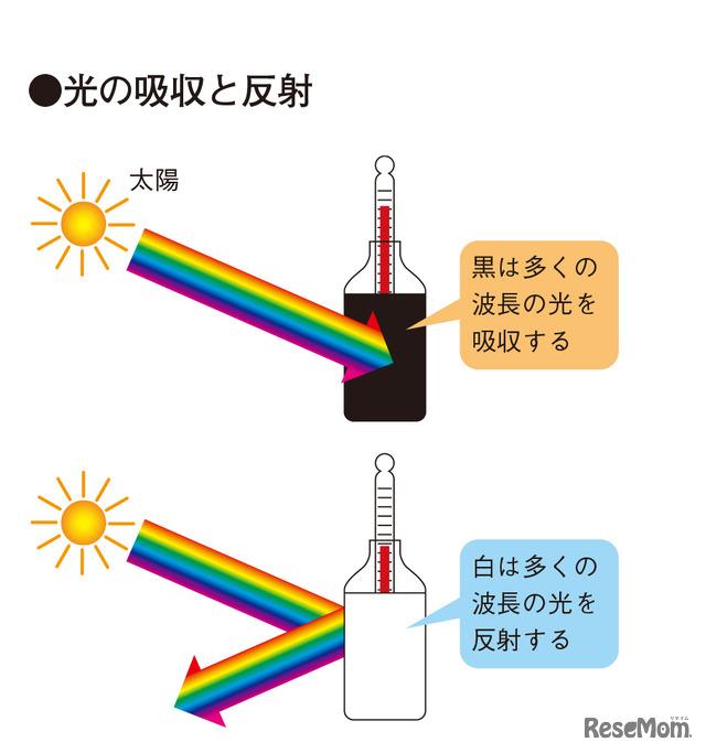 実験1 光の吸収と反射