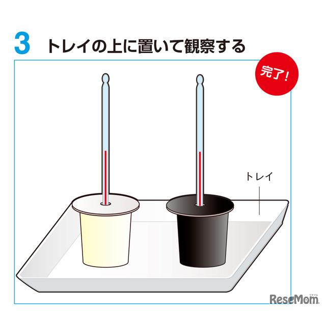 実験2 手順3