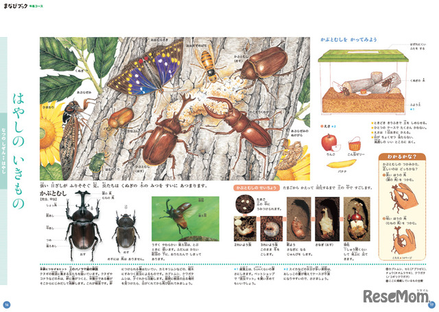 「まなびwith」の幼児コースには「小学館の図鑑NEOシリーズ」から抜粋した図鑑のページも