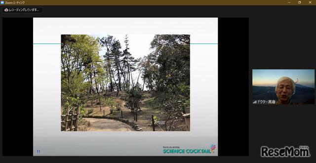 ドクターの尽力により、三溪園には煙突を隠すための築山が作られた